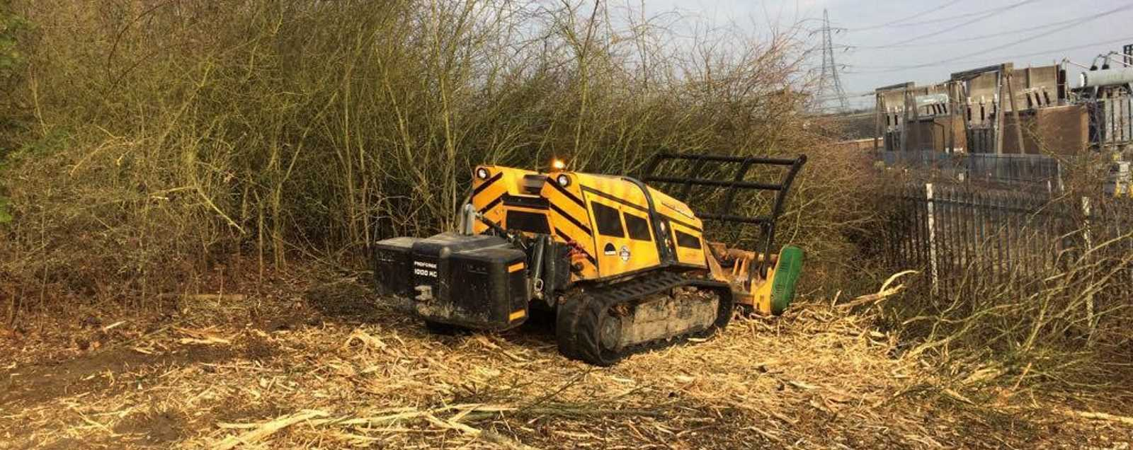Forestry and Site Clearance Services in Burton on Trent