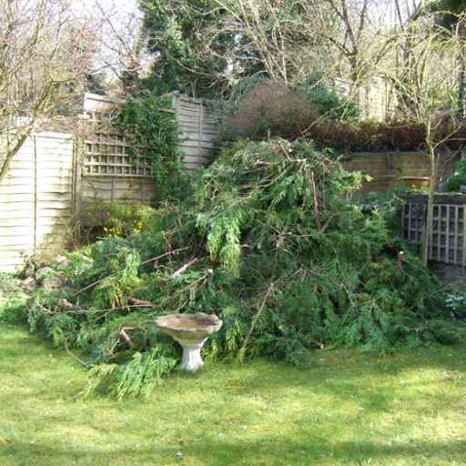 link to: Garden Clearance Service in Burton on Trent and Derby - Homes and Commercial