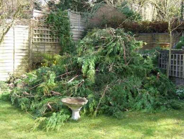 Garden Clearance Services in Burton on Trent and Derby - Homes and Commercial
