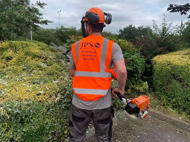 foliage management and Tree removal Burton on Trent